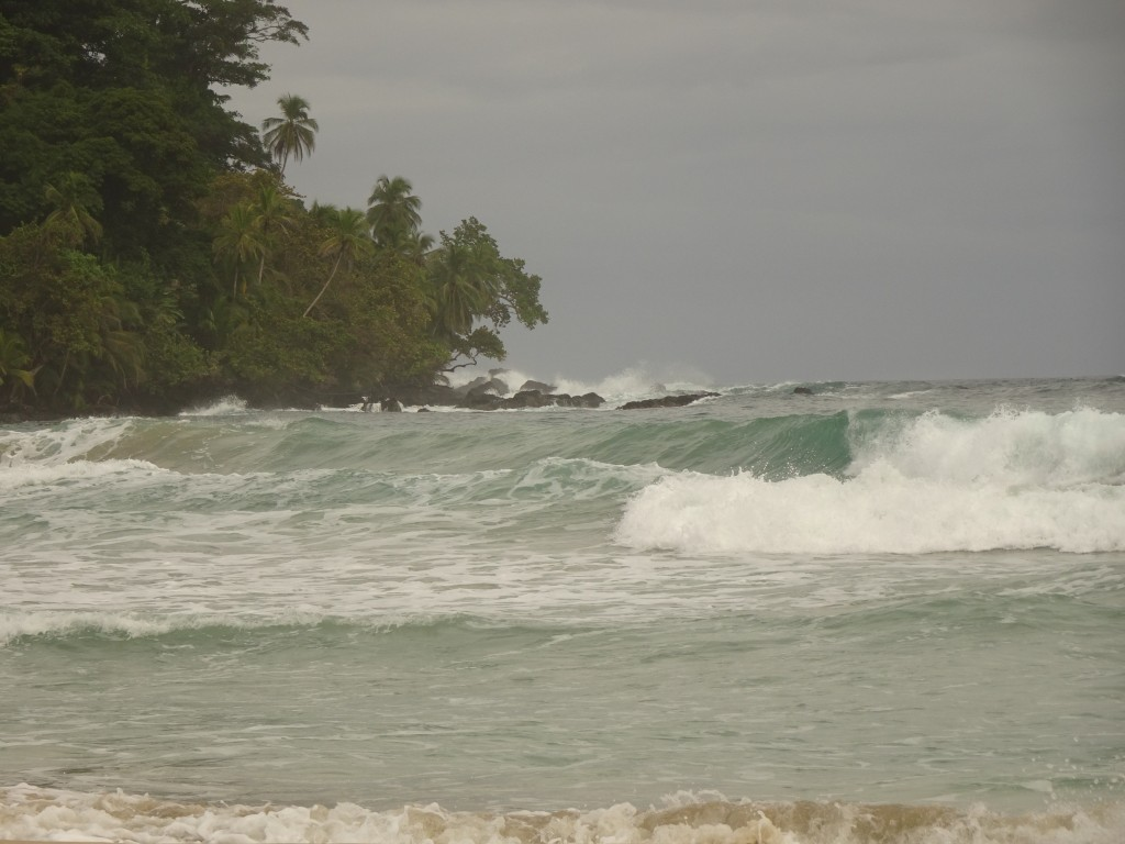 Wizard Beach, Bastimentos